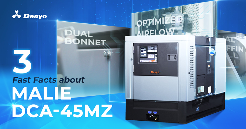3 Fast Facts About Malie DCA-45MZ Generator